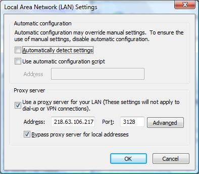 IE8 LAN Settings