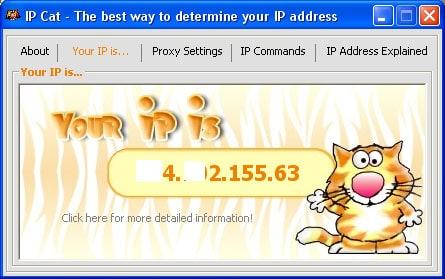 IP Cat Main