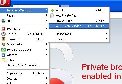 Opera Private Window