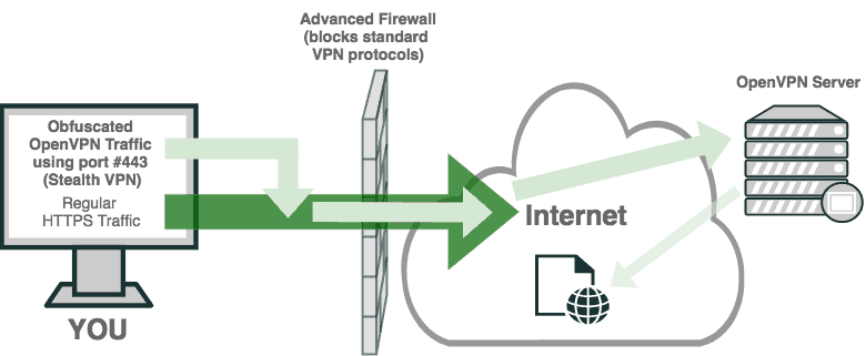 Diagram showing StealthVPN - OpenVPN HTTPS Traffic